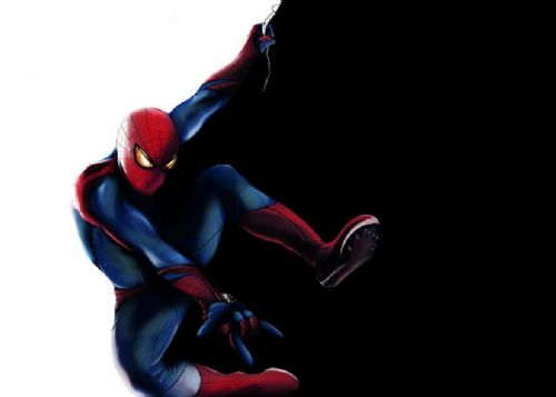 SPIDER MAN - BLACK CUTS WHITE - Landscape canvas print - self adhesive poster - photo print